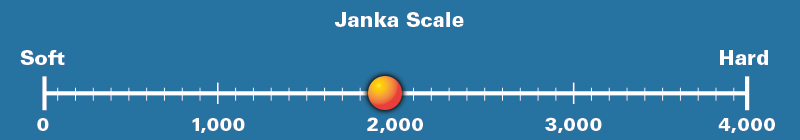 Black Mesquite Janka Scale Rating 1,940
