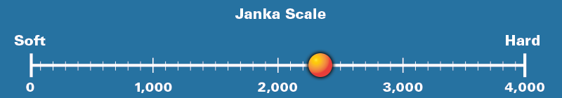 Spotted Gum Janka Scale Rating 2,330