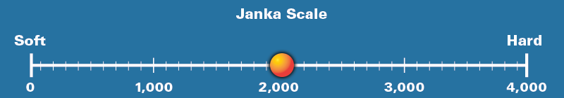 Sydney Blue Gum Janka Scale Rating 2,023