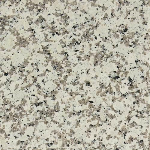 Daltile Granite 12 X Polished Chloe White