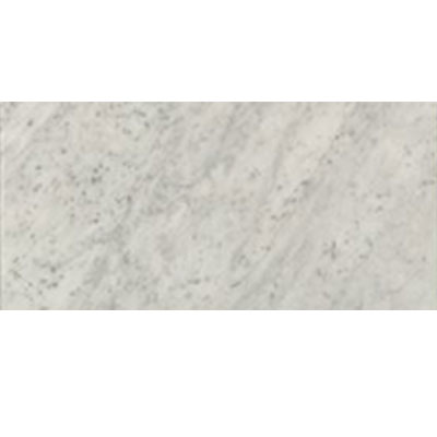 Marble Stone 12 x 24 White Carrara Polished